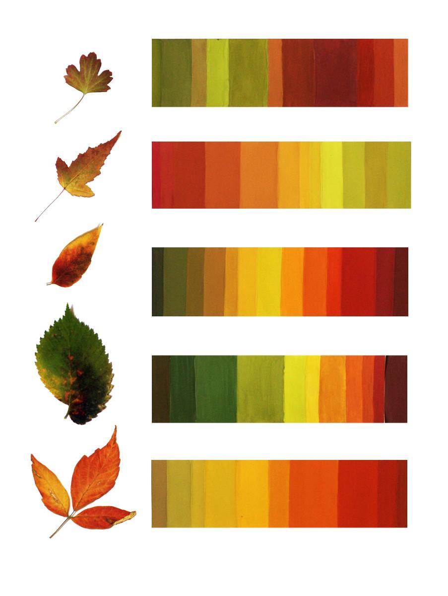 Растяжка от одного цвета как сделать 361